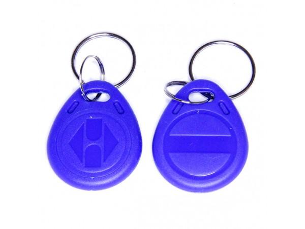 Ключ брелок (перезаписываемый) Tantos Temic брелок TS
