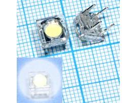 LED CP41B-WES-CK0P0154 белый 7,6х7,6мм 5200 mcd