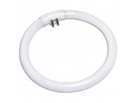 Лампа 10W T4 6400k кольцевая G10q d=121мм