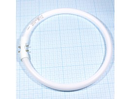 Лампа 22W FC22W/840 кольцевая 1800lm 2GX13 Osram